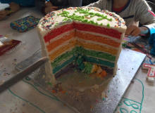 "10"" 7 layer rainbow cake"